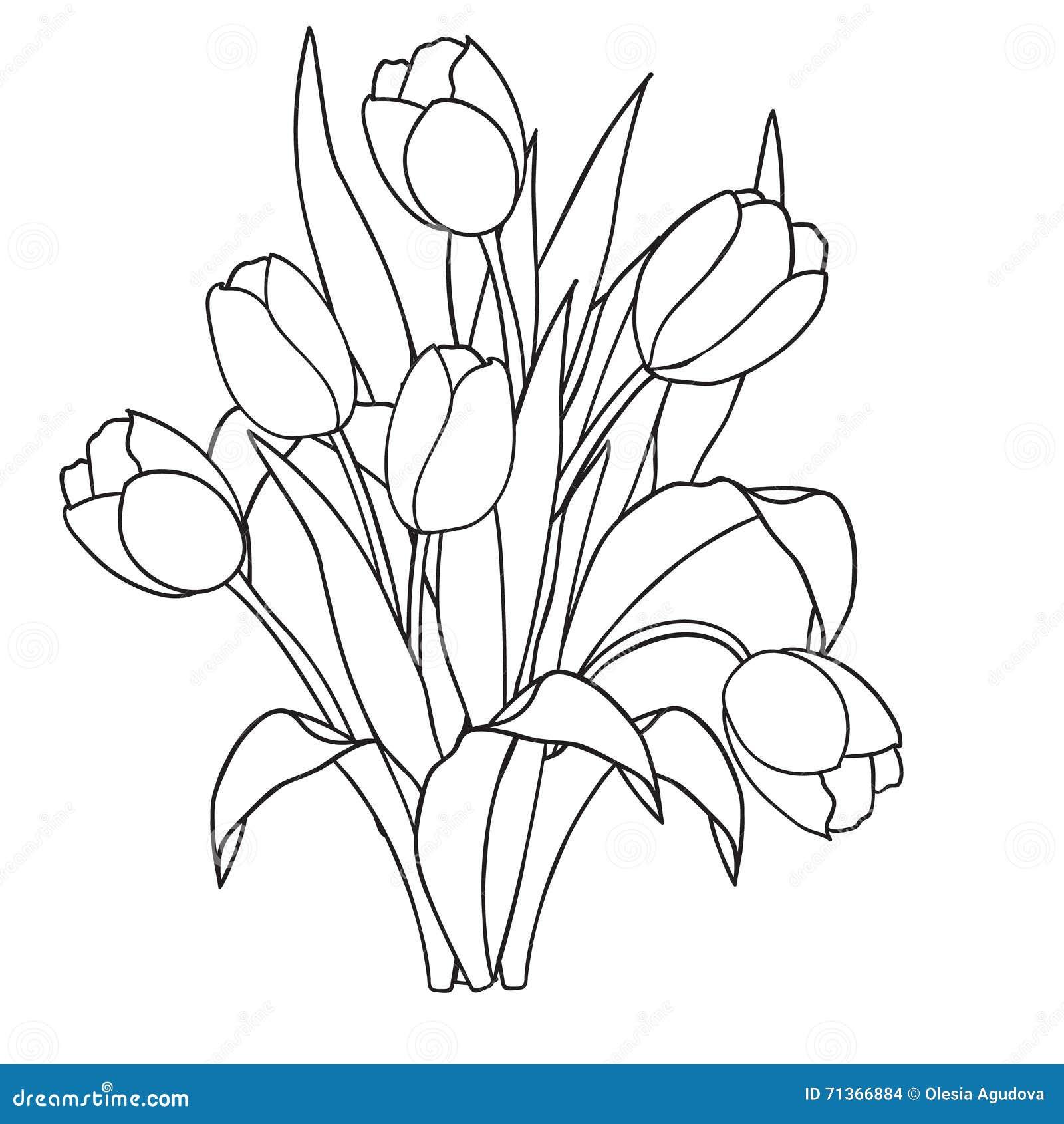 Tulips Flowers Ornamental Black