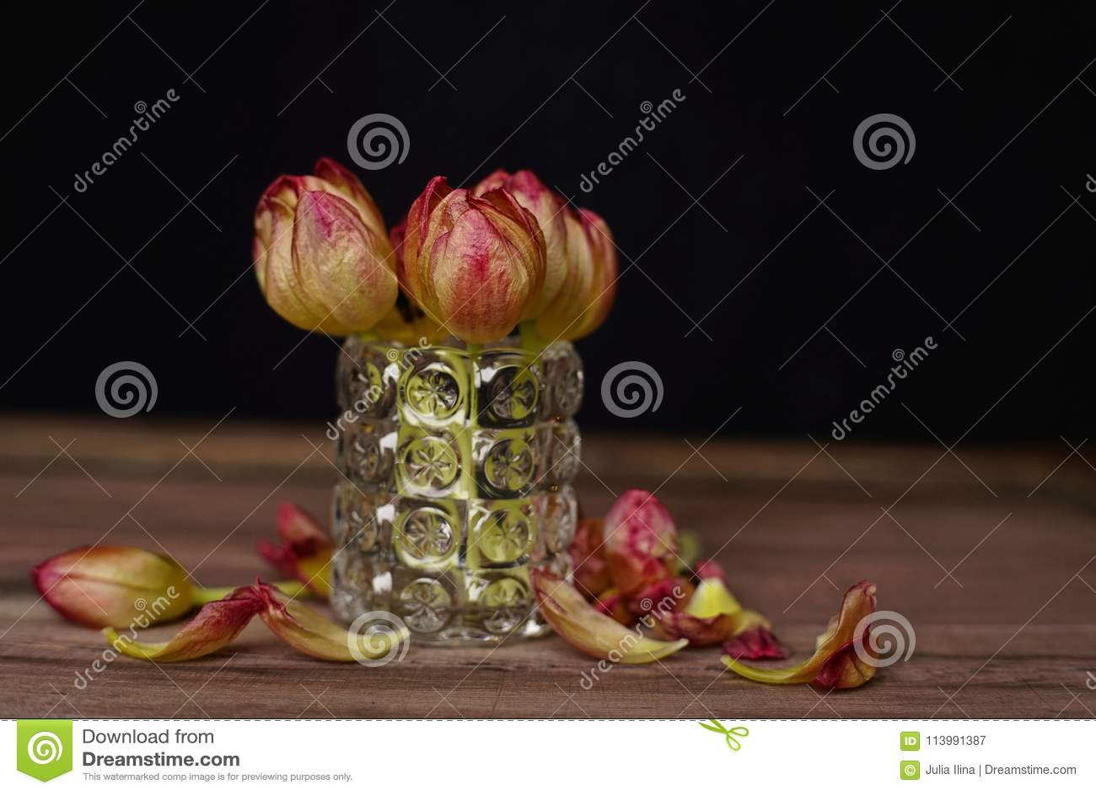 tulips flowers vase black background wood table close-up