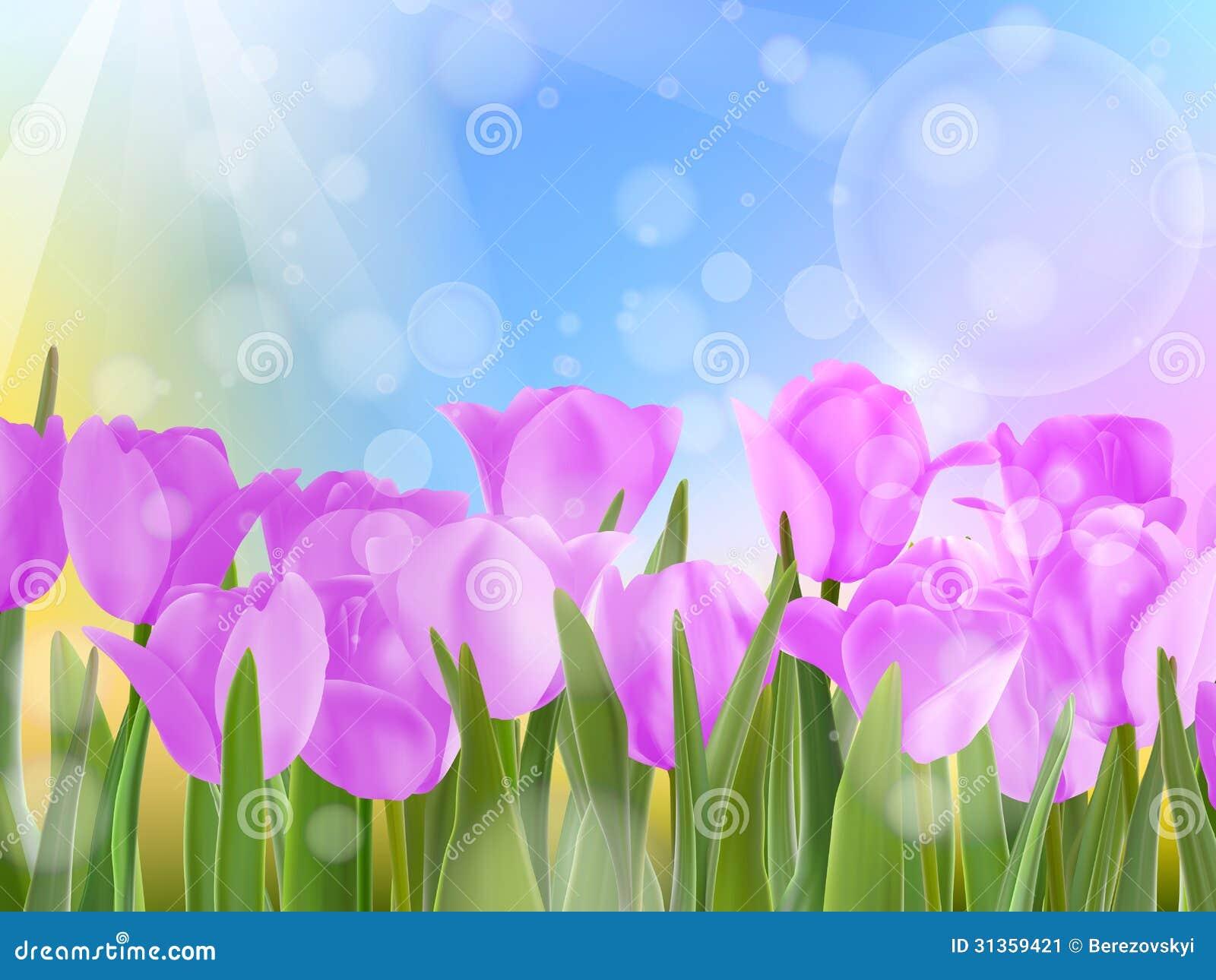 Tulips in garden on blue sky. EPS 10