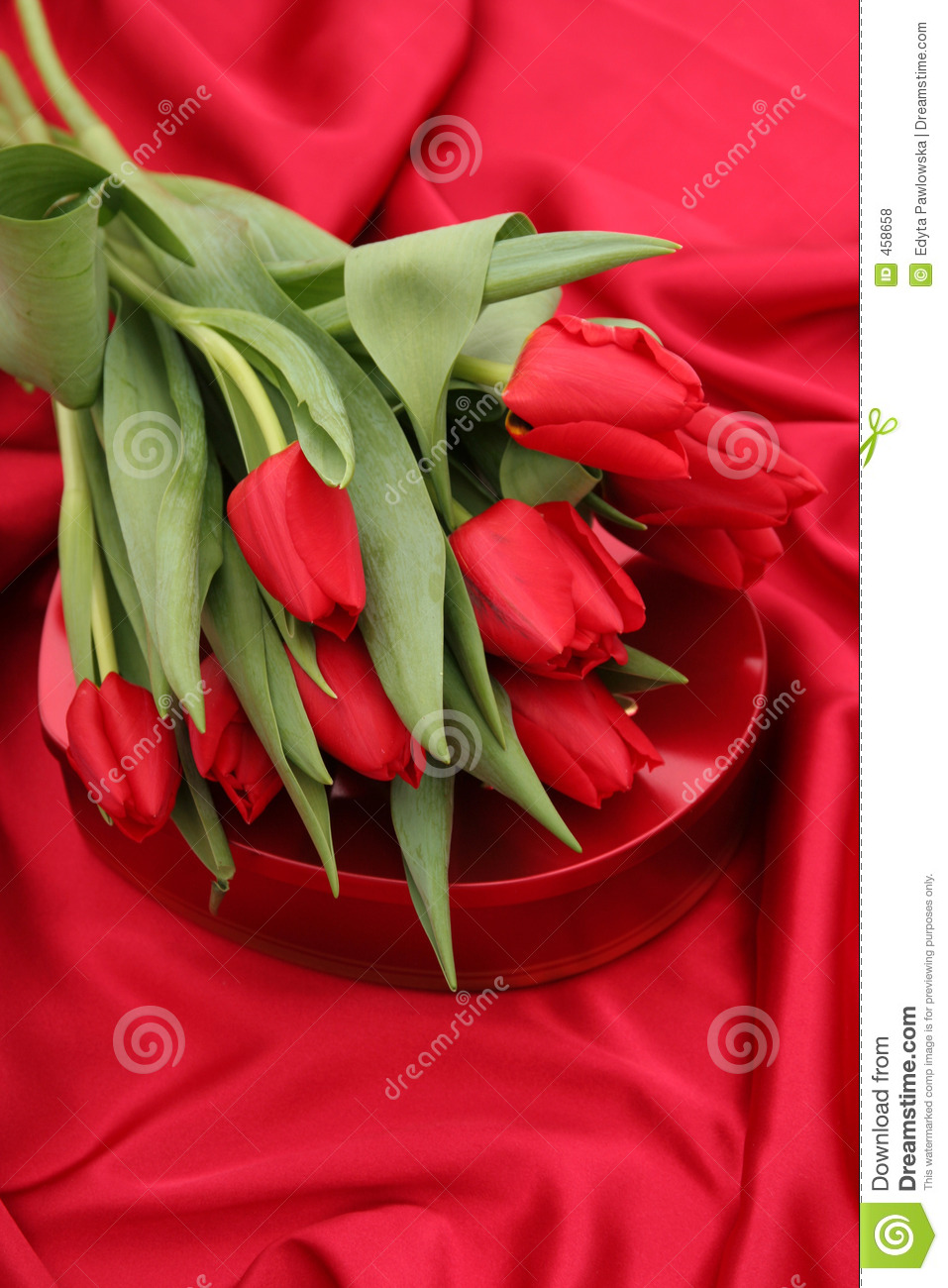 Download Tulips And Heart Shaped Box Stock Photo - Image of valentines, shape: 458658