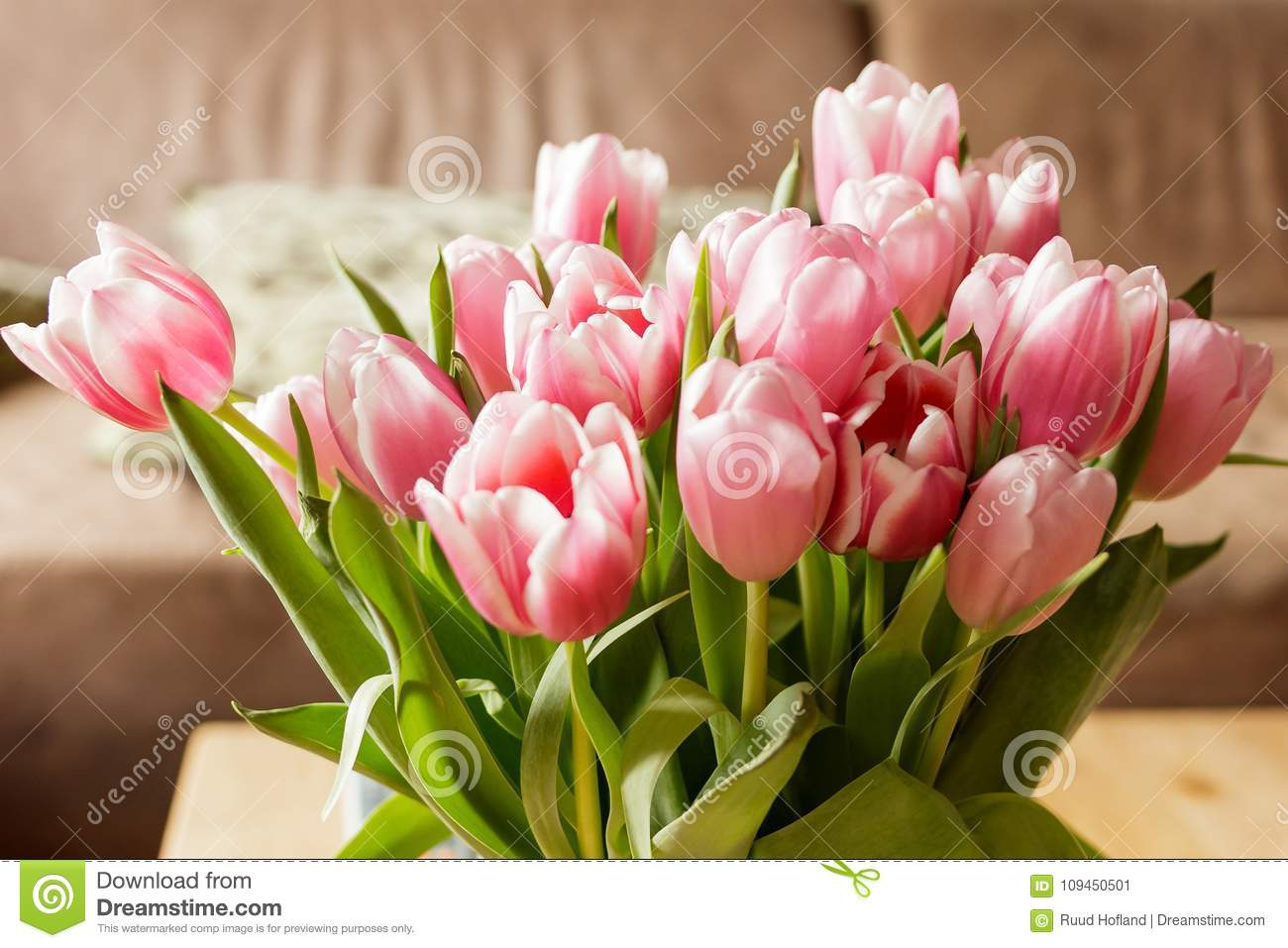 Tulips from holland - Valentine tulips