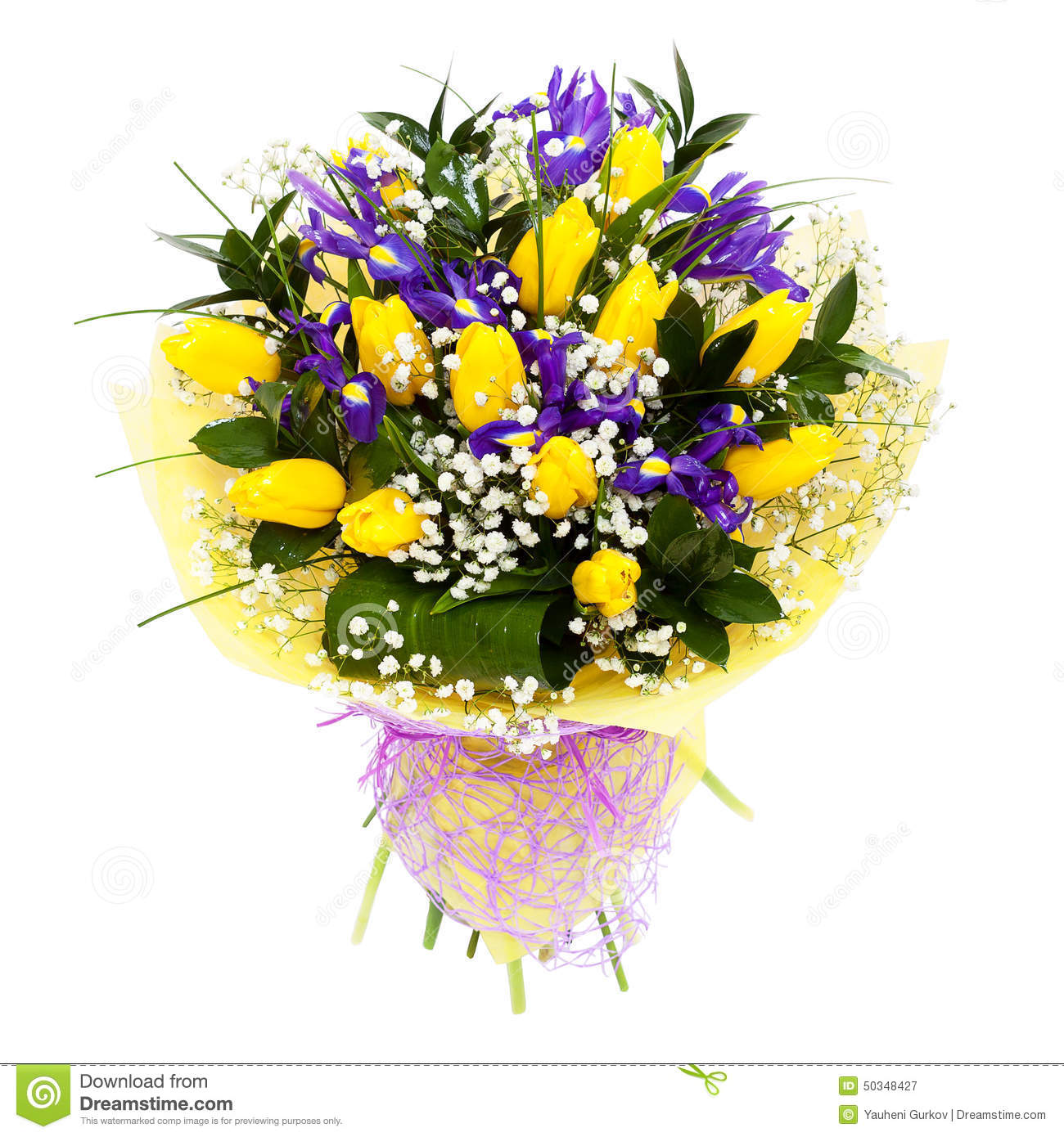 Tulips isolated flower arrangement bouquet stock image image of tulips isolated flower arrangement bouquet mightylinksfo