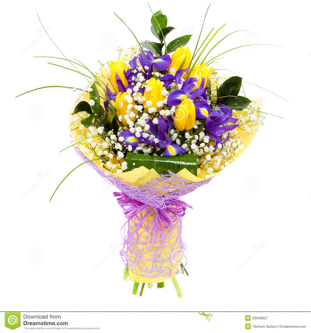 Tulips Isolated Flower Arrangement Bouquet Stock Image Image Of