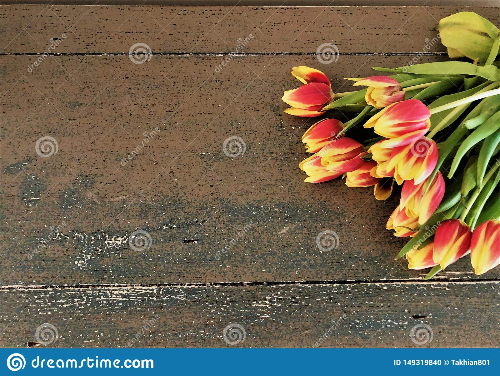 Tulips laying on a table