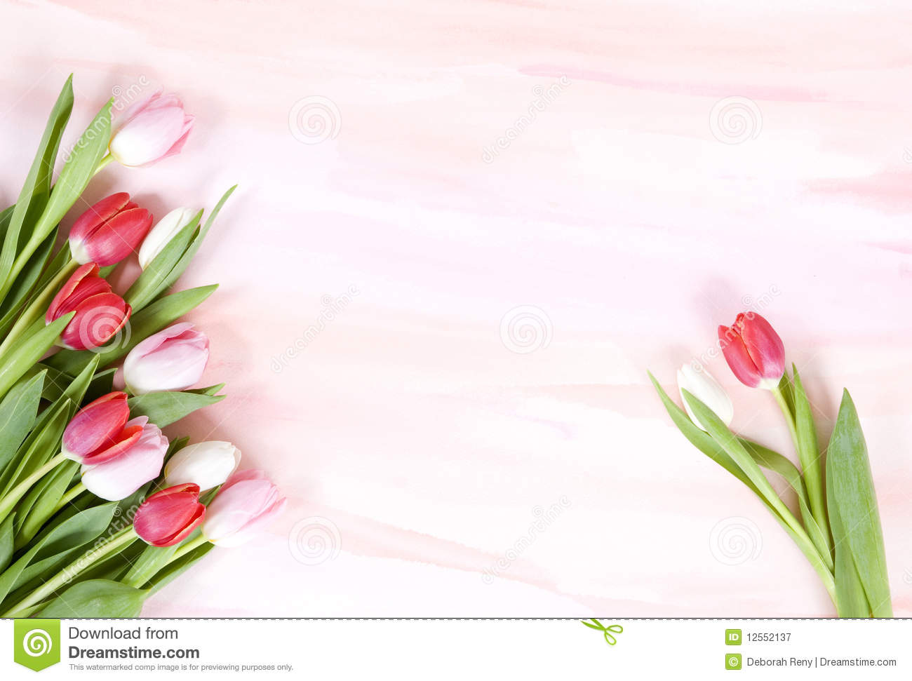 Tulips On Pastel Watercolor Background For Spring Royalty Free Stock