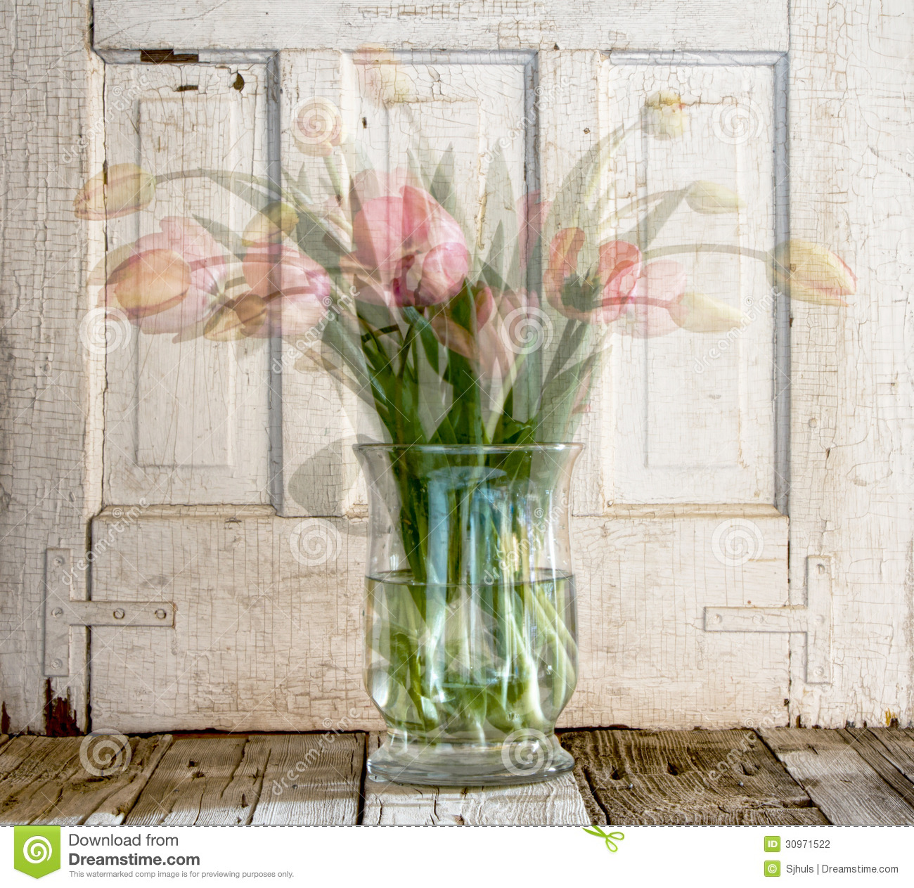 Tulips in vase stock photo image of greeting beauty 30971522 tulips in vase reviewsmspy
