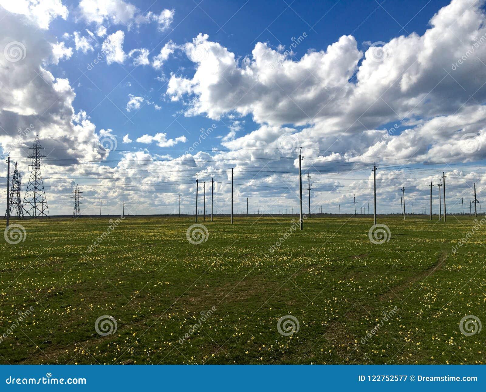 Tulpanfält och elektricitetskuddarna med den molniga himlen