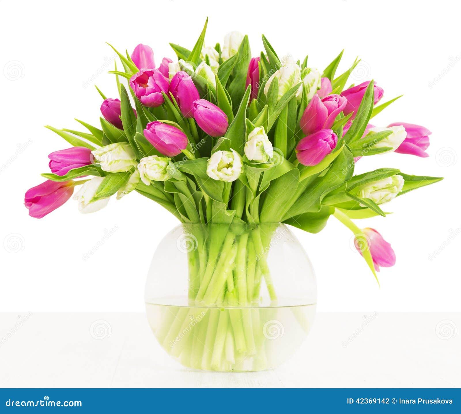 tulpen bl ht blumenstrau im vase wei er hintergrund stockfoto bild von leerzeichen gruppe. Black Bedroom Furniture Sets. Home Design Ideas