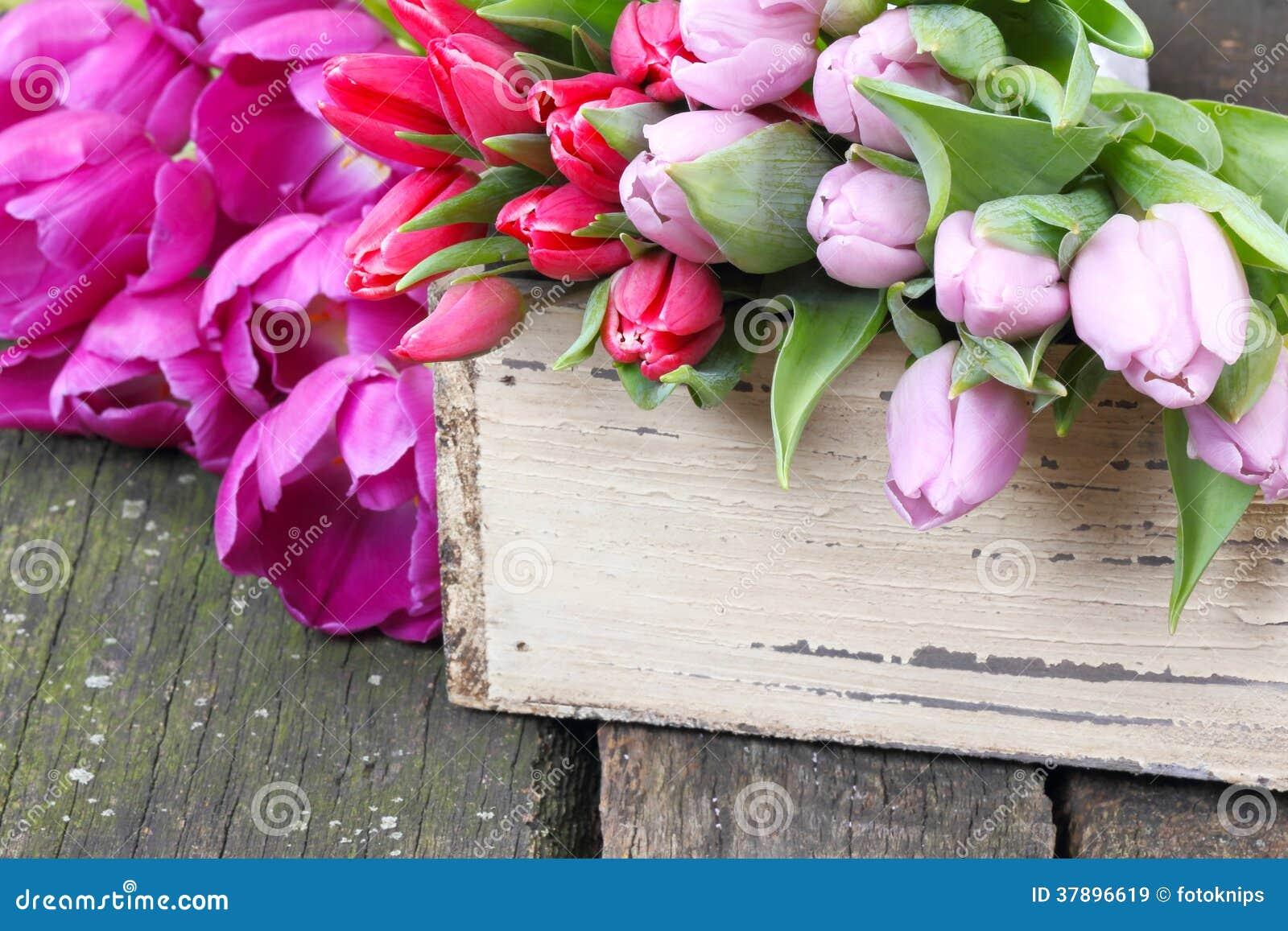 Tulpen op houten lijst