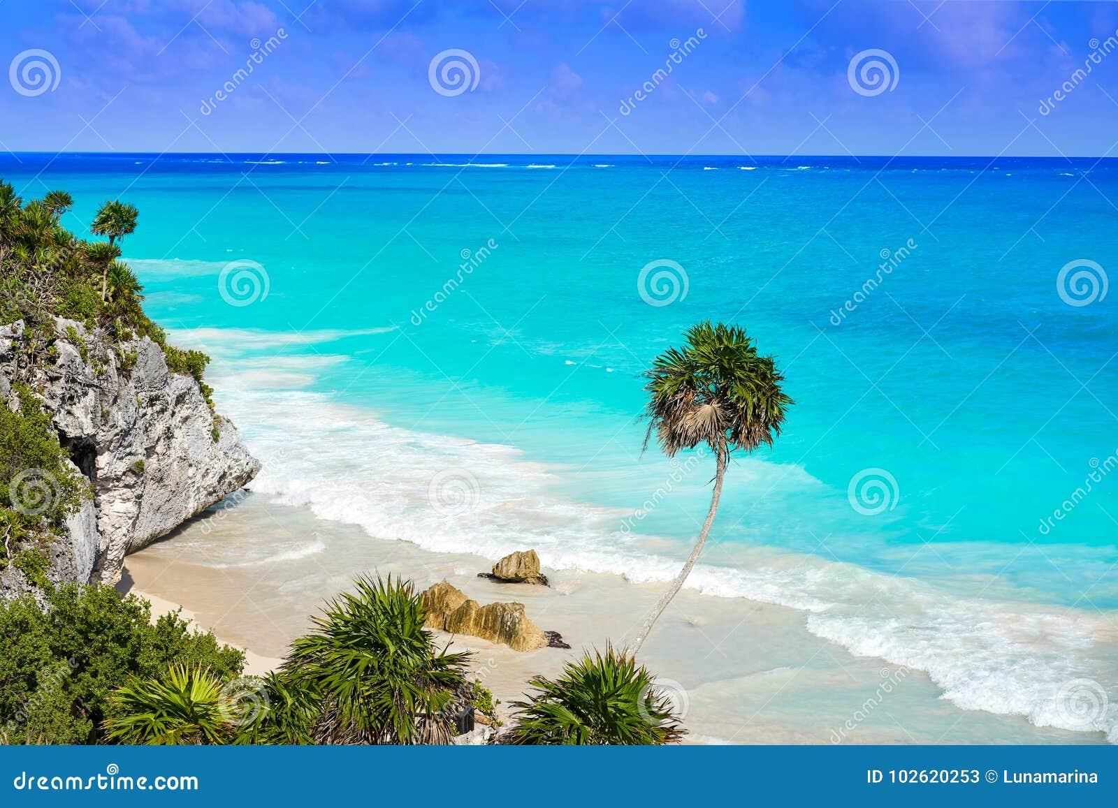 Tulum绿松石海滩在里维埃拉玛雅人的棕榈树在玛雅