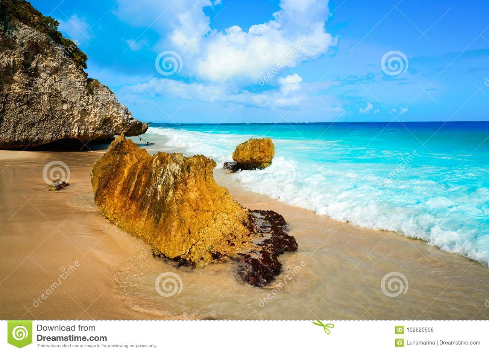Tulum beach palm tree in Riviera Maya