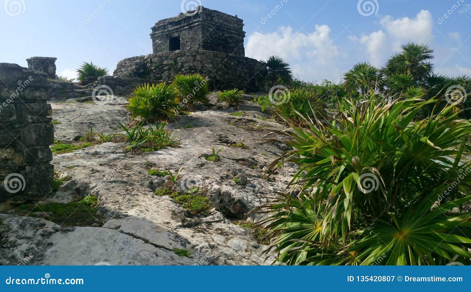 Tulum National Park - Mexico