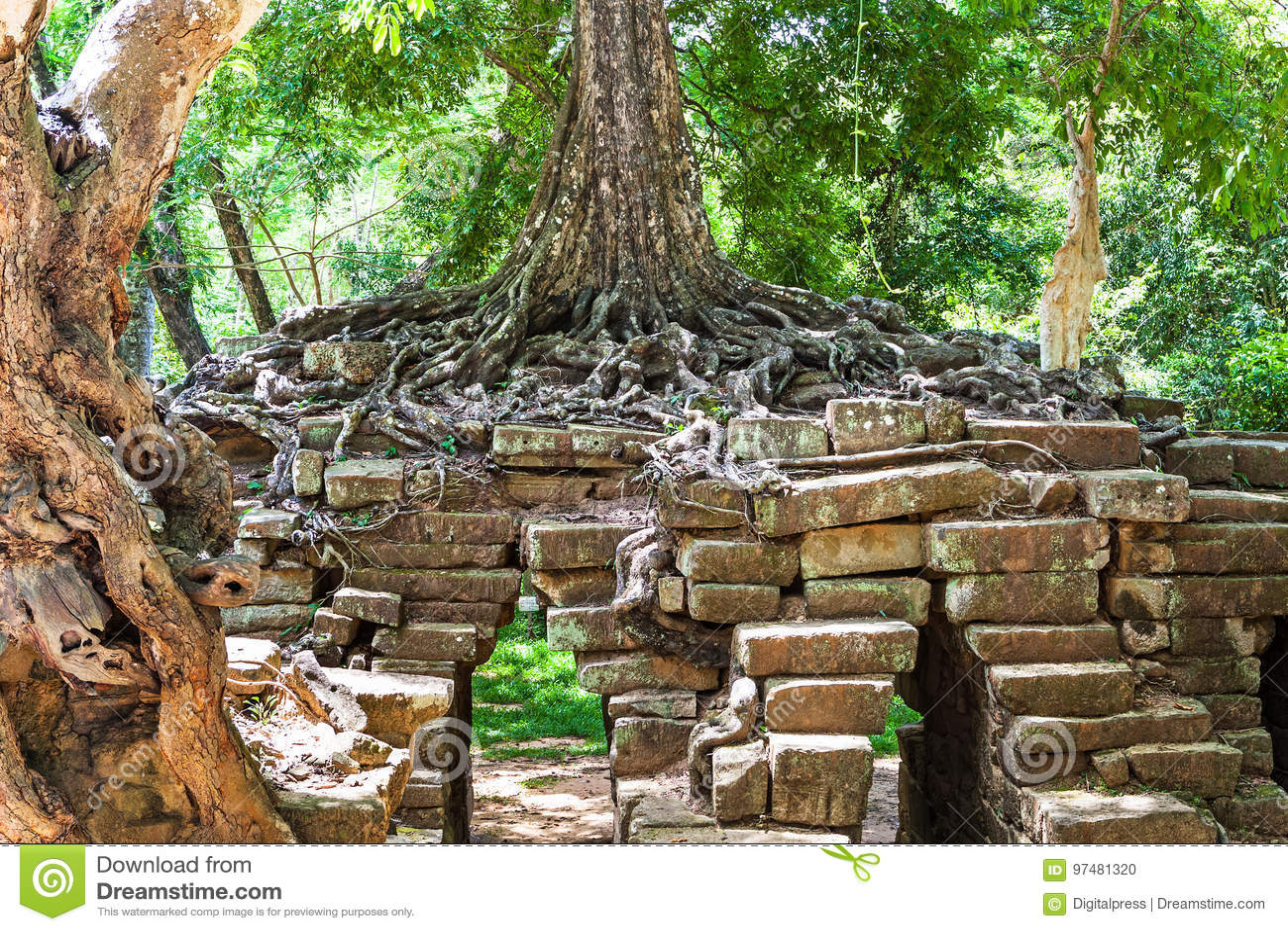 Tum Phrom a Angkor Wat, Cambogia