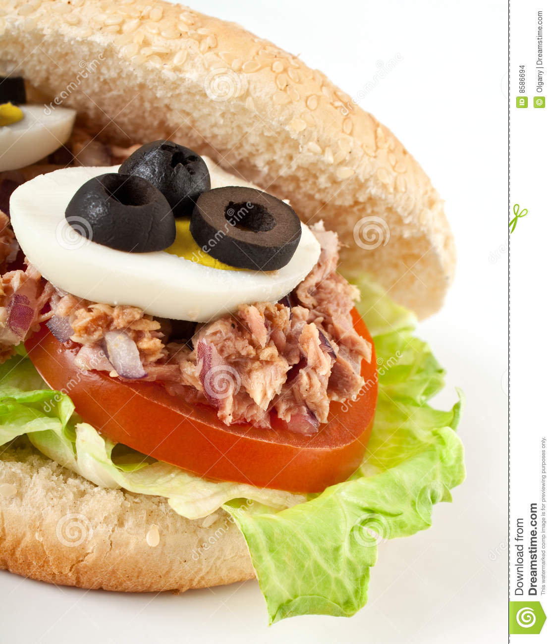 Tuna and egg sandwich stock images image 8586694 for Tuna and egg sandwich