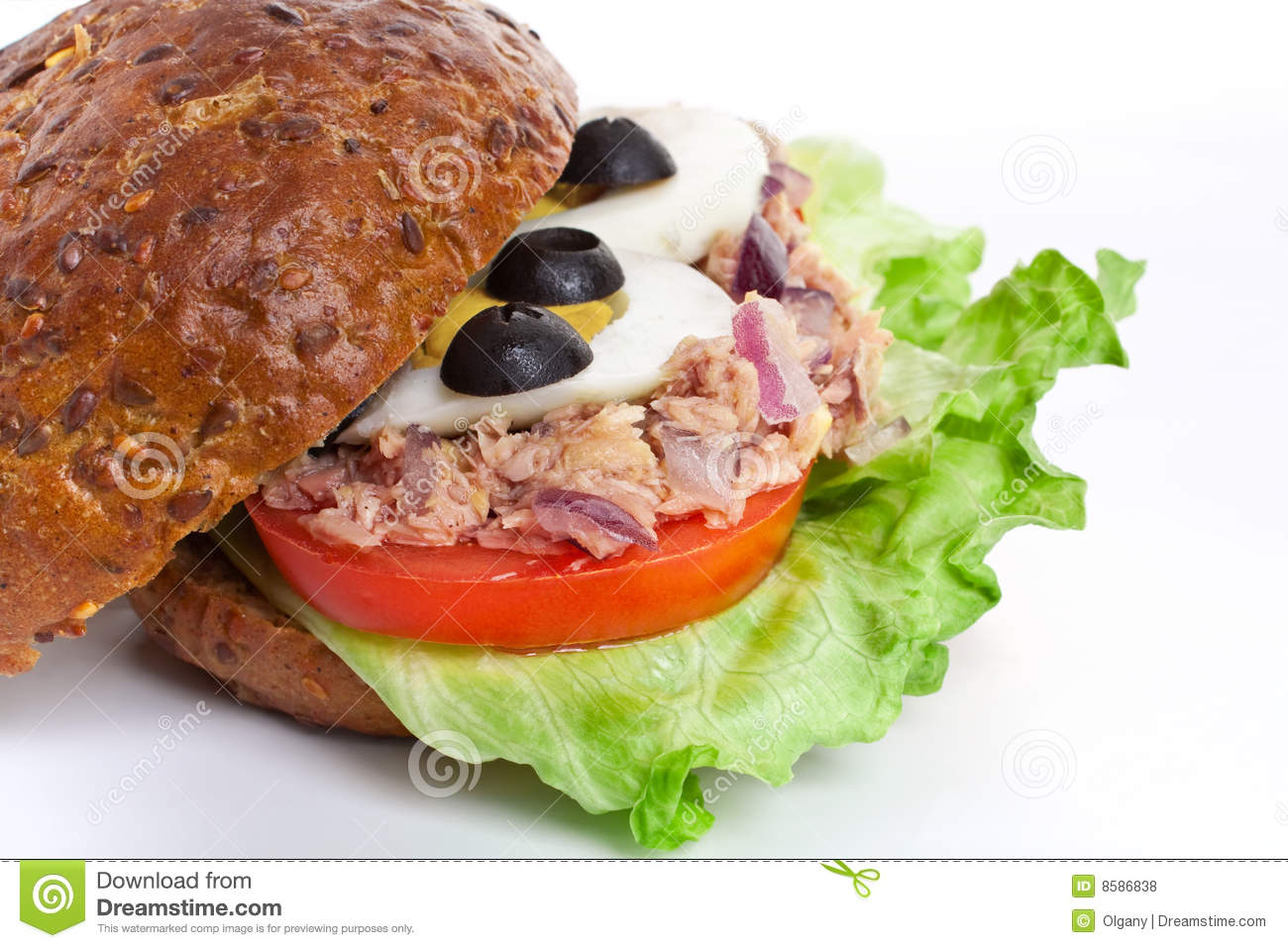 Tuna and egg whole wheat sandwich royalty free stock for Tuna and egg sandwich