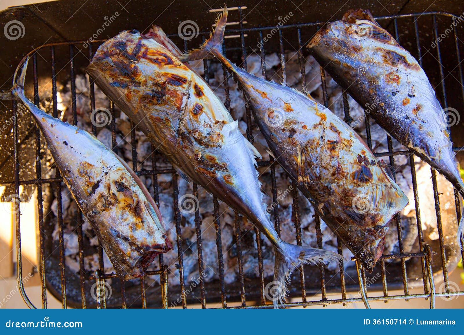 Tuna Fish Barbecue With Bonito Sarda And Little Tunny
