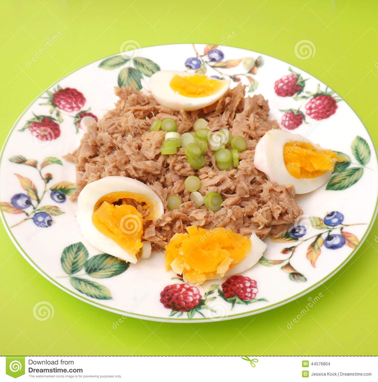 Tuna fish with eggs stock photo image 44576804 for How to make tuna fish with eggs