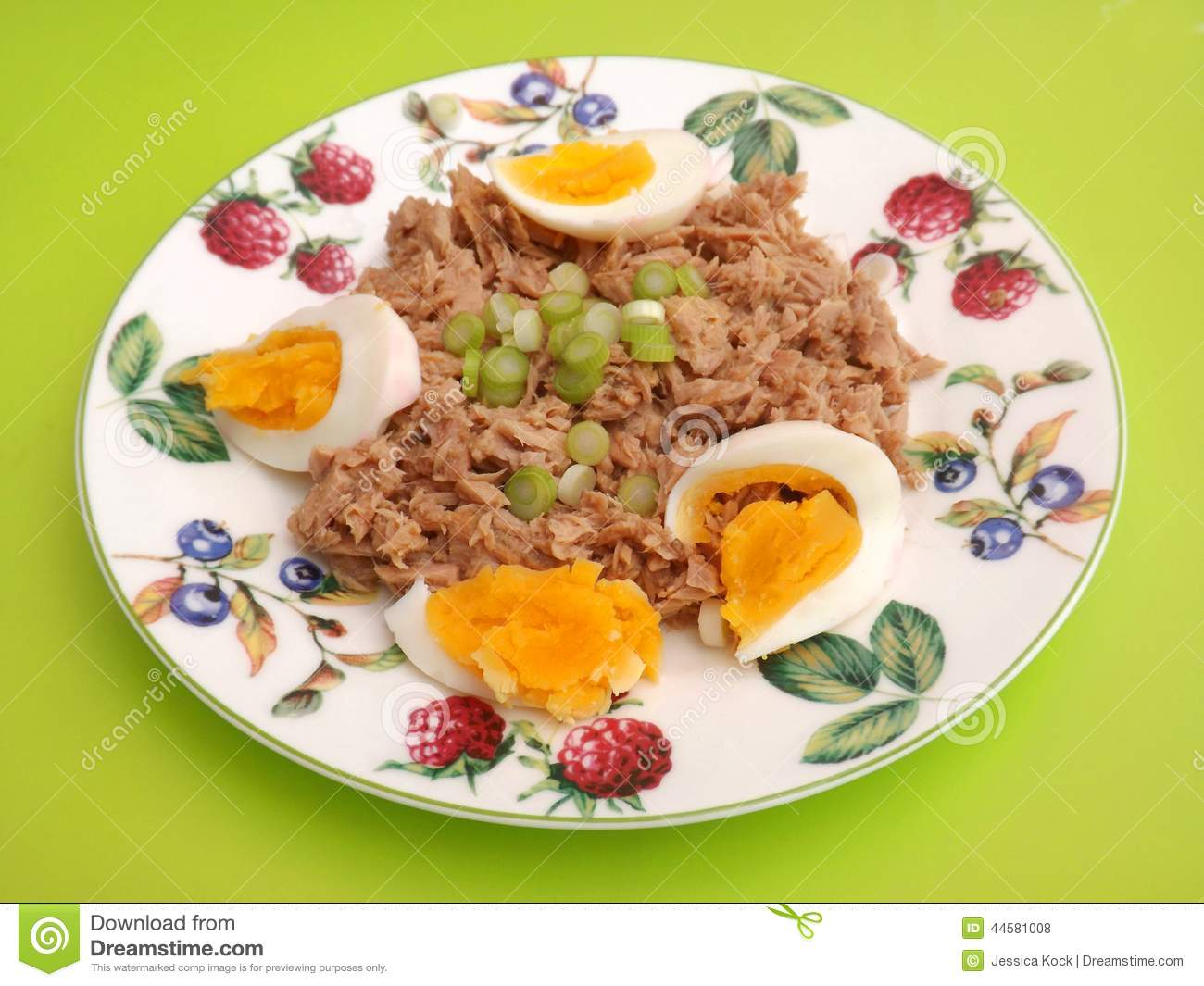 Tuna fish with eggs stock photo image 44581008 for How to make tuna fish with eggs