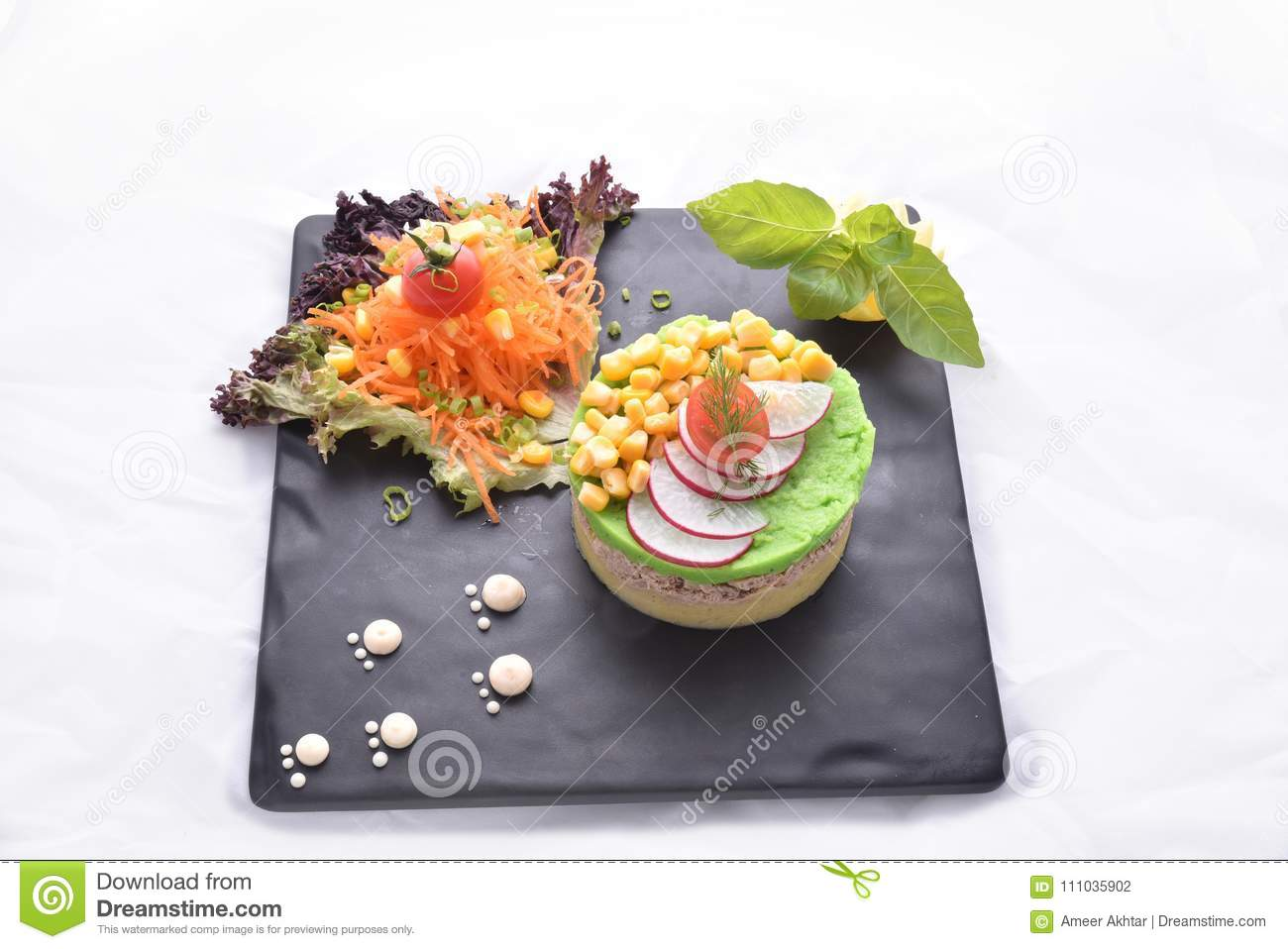 Tuna Fish With Mashed Potatoes & Salads- Protein Meal Stock