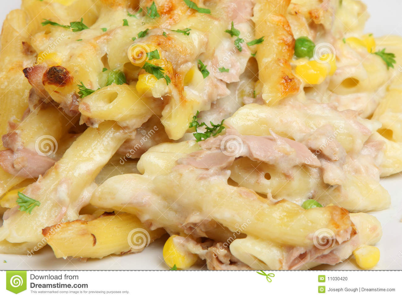 Tuna fish pasta bake stock photo image 11030420 for Tuna fish pasta