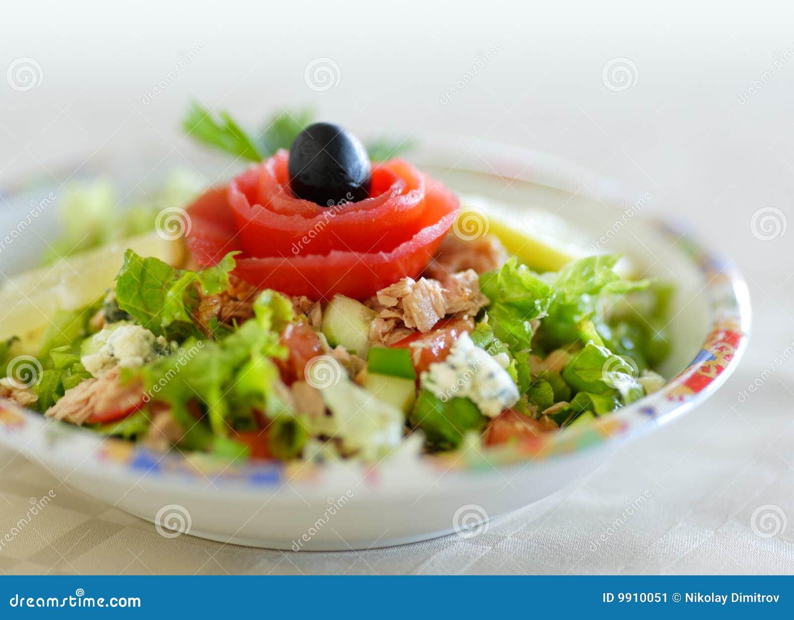 Tuna Fish Salad Stock Image - Image: 9910051
