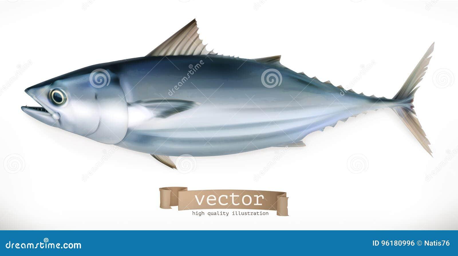 Tuna Fish vektor för symbol 3d Skaldjur
