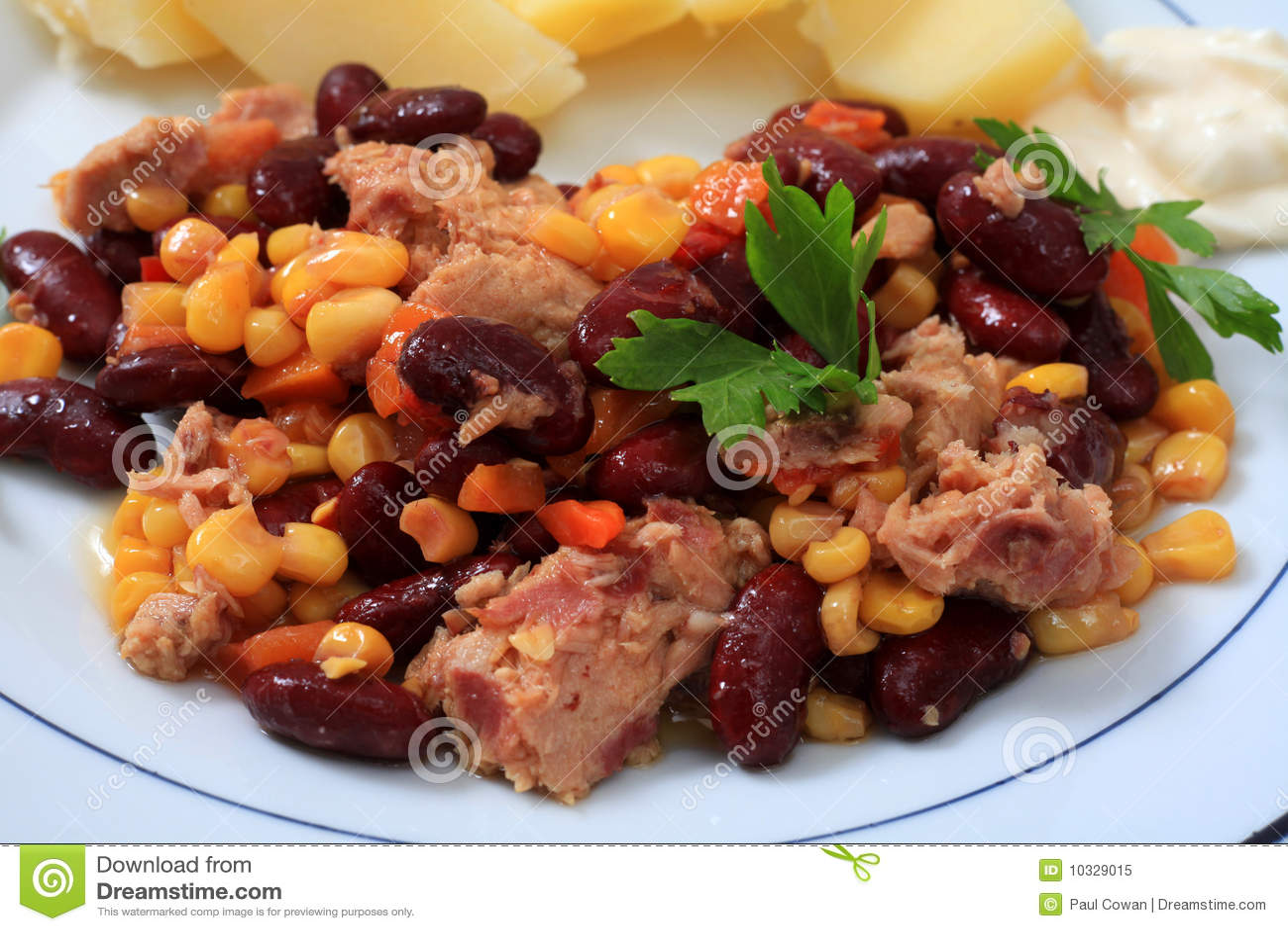 Tuna salad close-up
