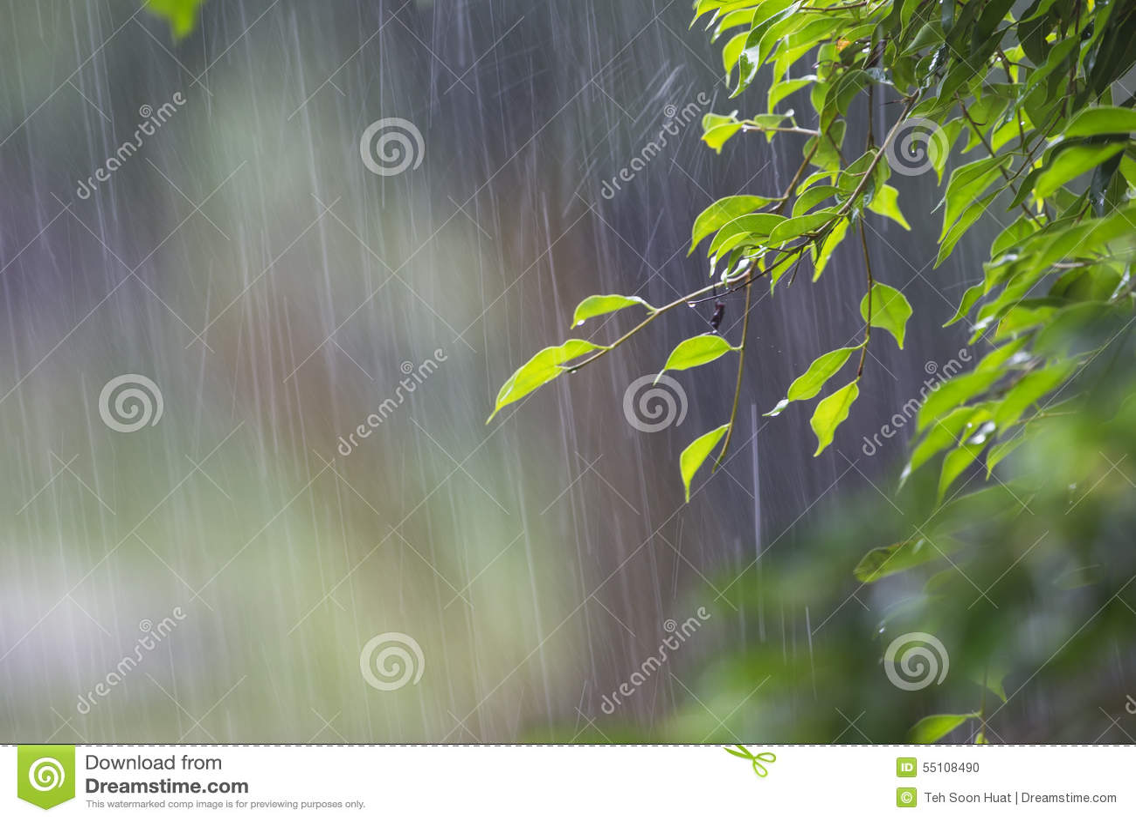 Tungt regn