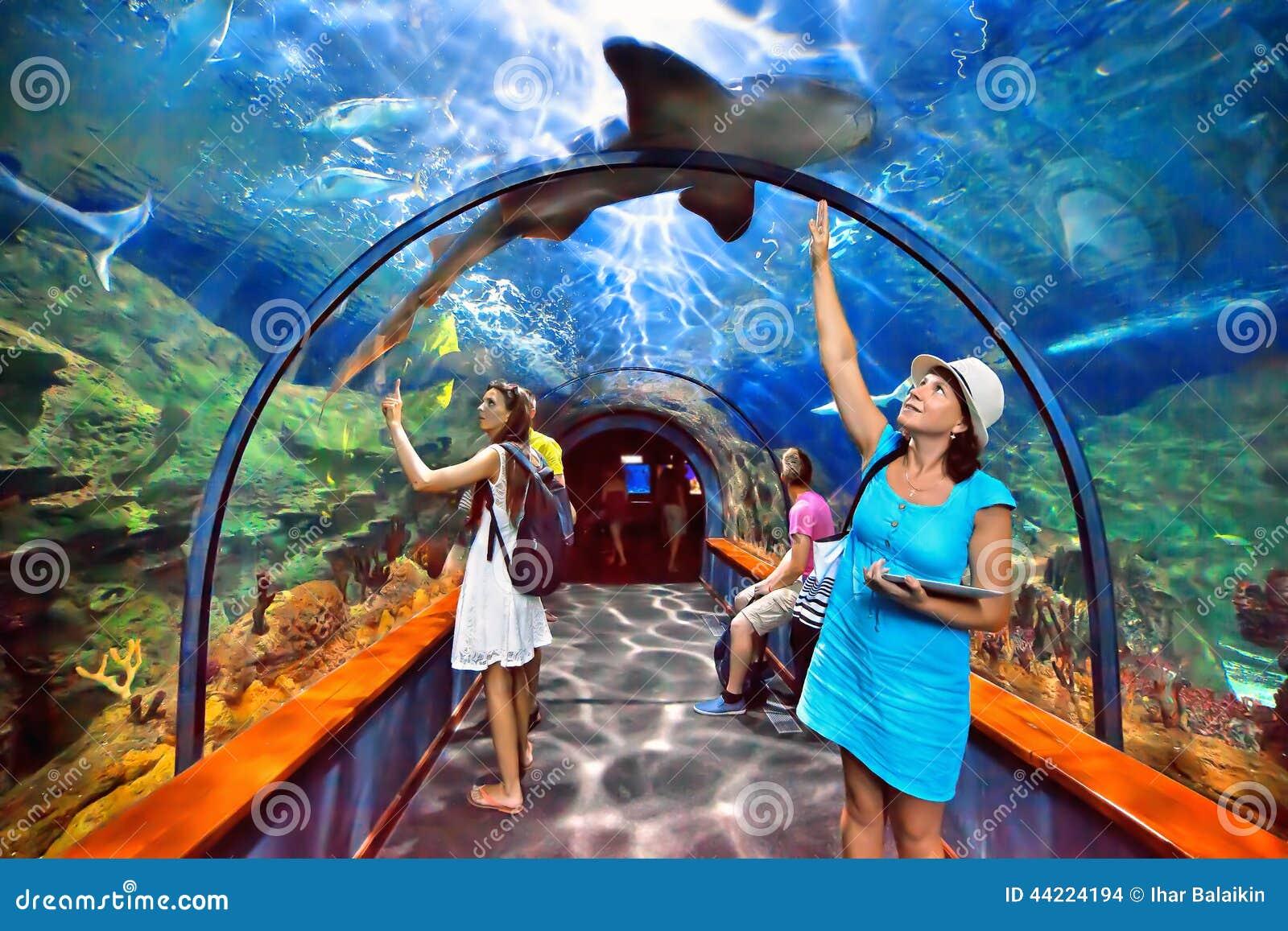 Tunnel acquatico nel parque di Loro, Tenerife