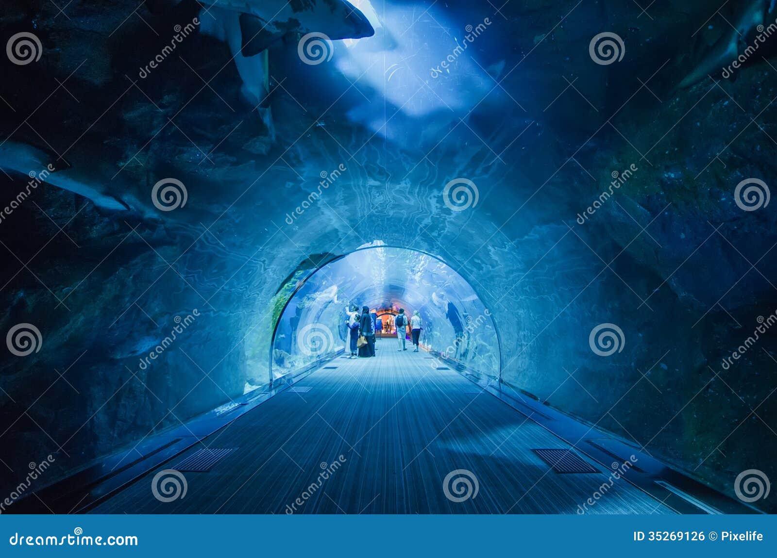 the tunnel of the dubai aquarium editorial photo image 35269126. Black Bedroom Furniture Sets. Home Design Ideas