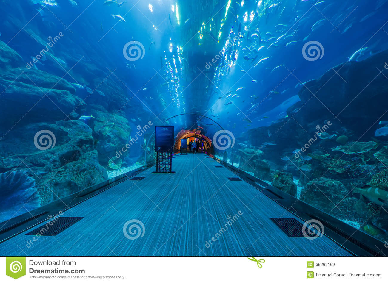 the tunnel of the dubai aquarium editorial stock image image of people acrylic 35269169. Black Bedroom Furniture Sets. Home Design Ideas
