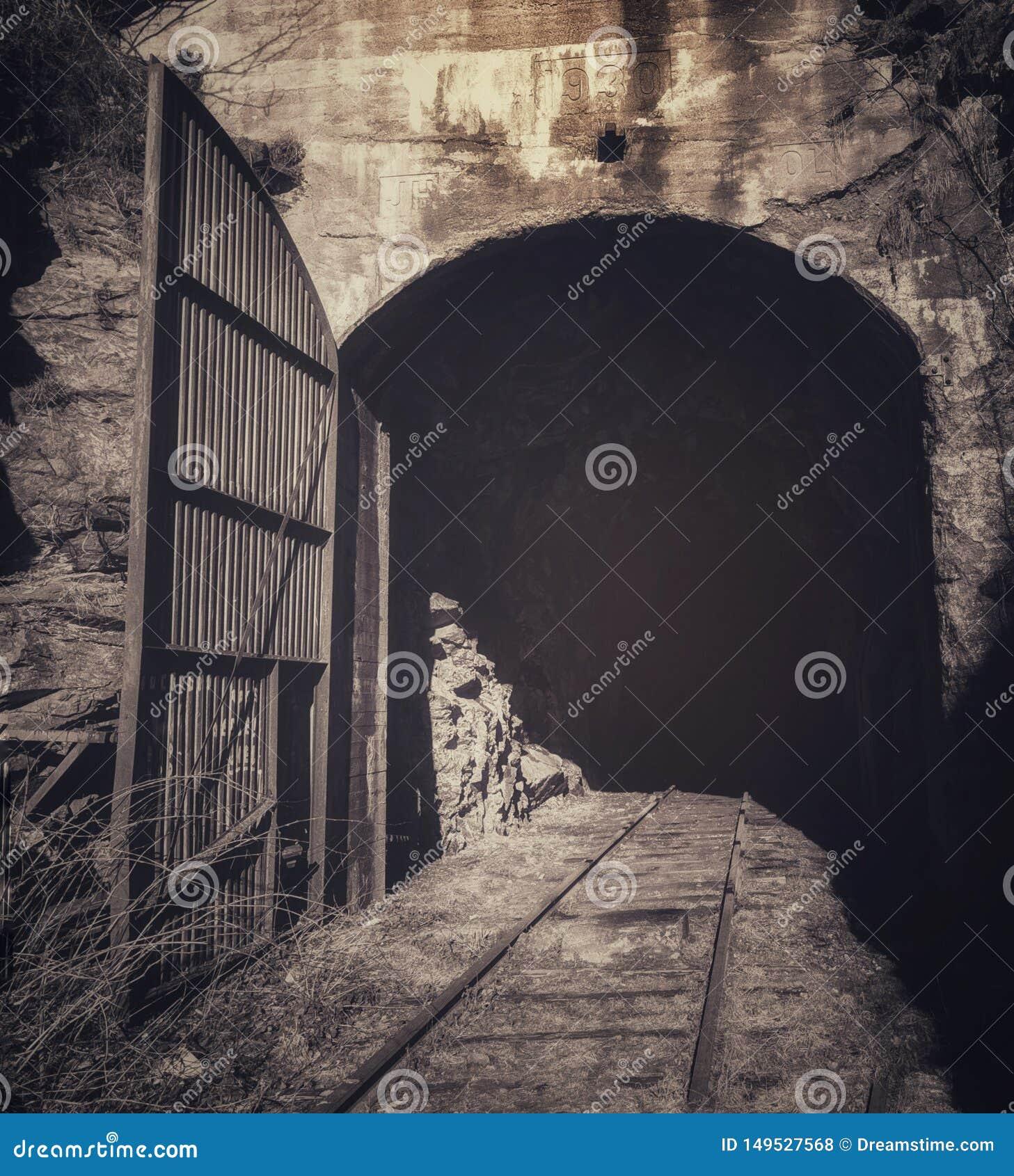 Tunnel ferroviario abbandonato nel mål di Å
