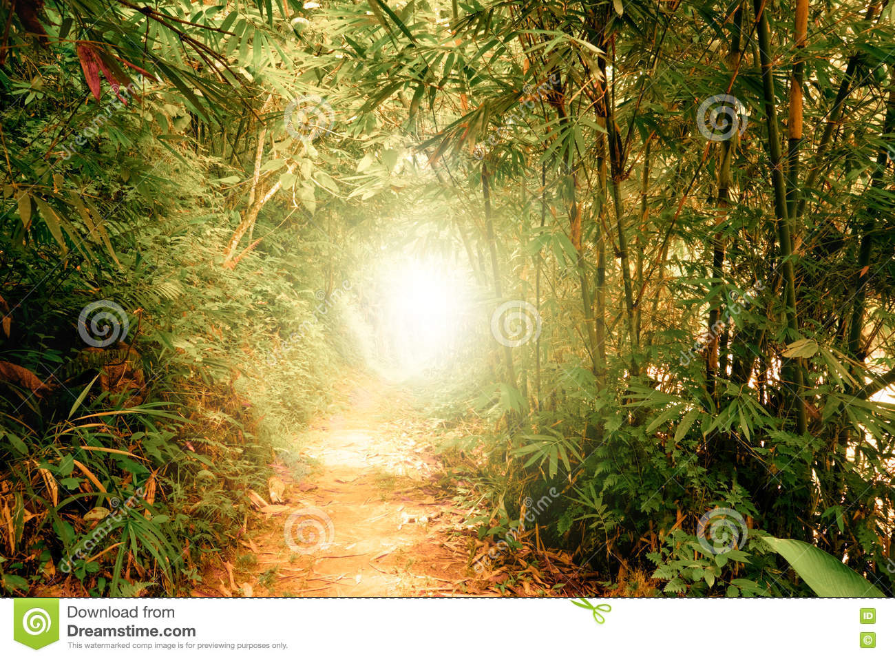 Tunnel with sun rays in fantasy tropical forest