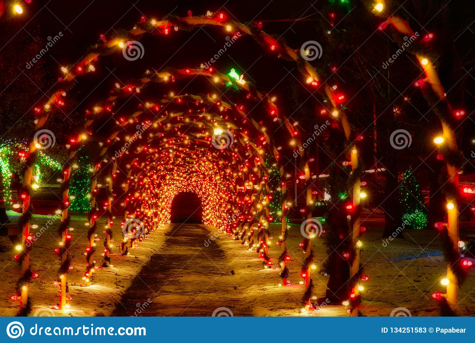 Tunnel von Weihnachtsbögen