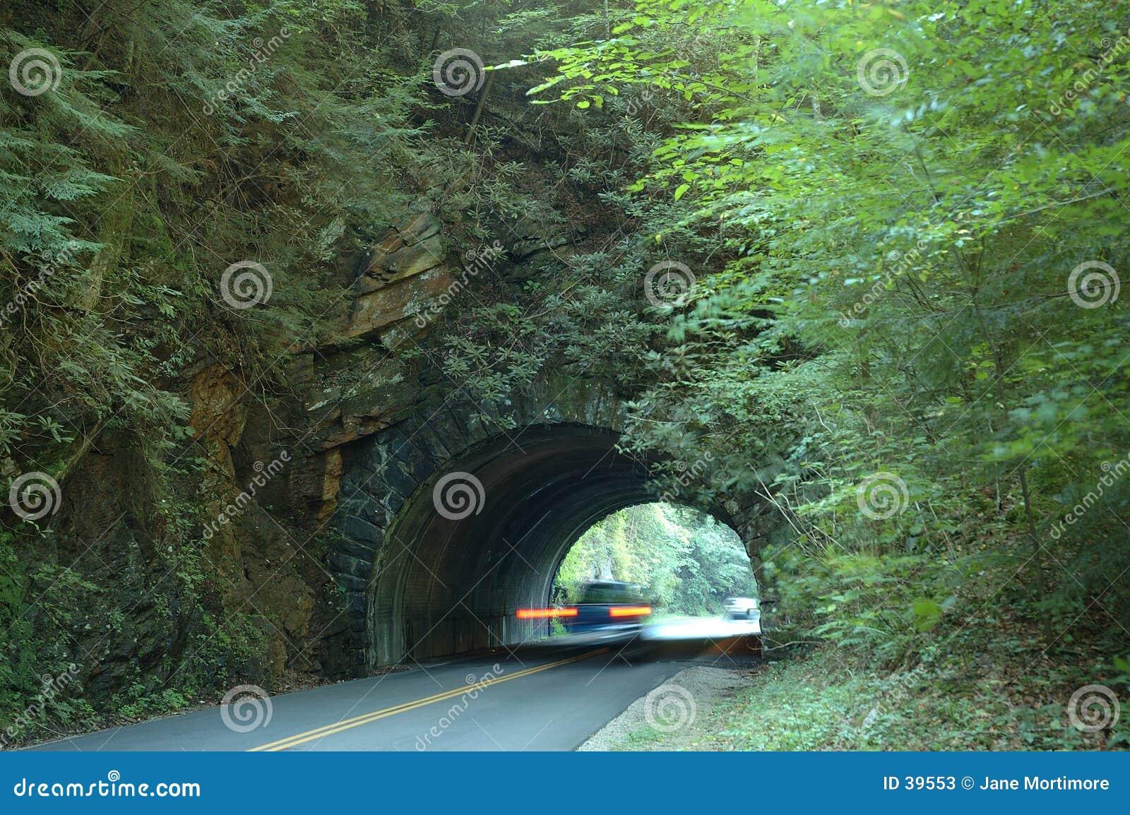 Tunnelen rusar