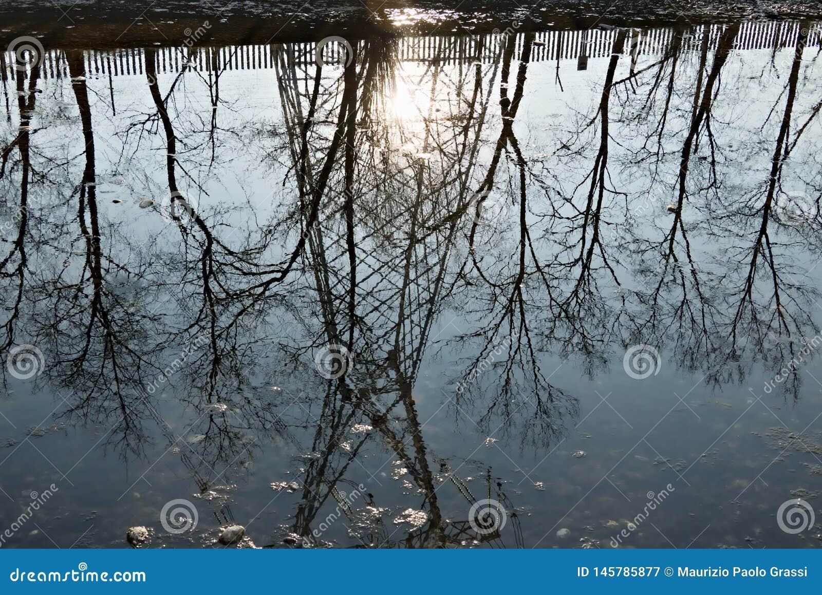 Turbigo Μιλάνο Λομβαρδία r Αντανάκλαση trellis στο νερό του ποταμού Naviglio Grande