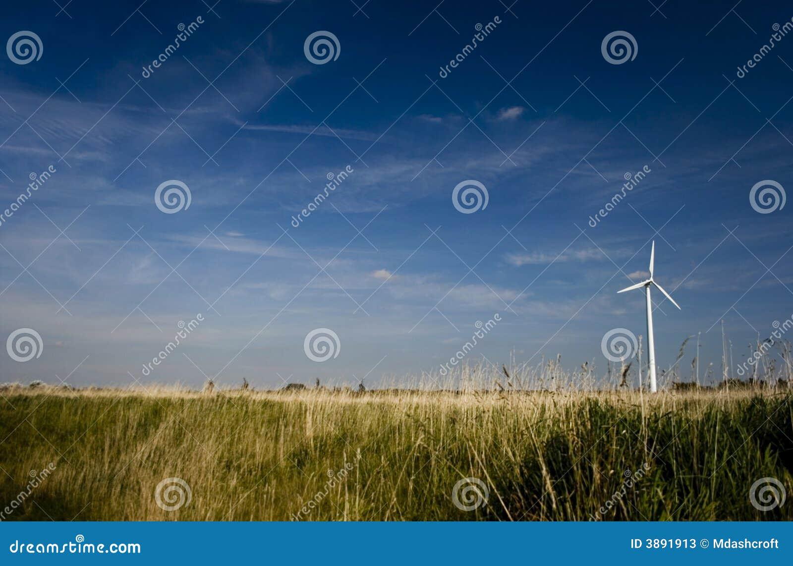 Turbina di vento sola nel campo