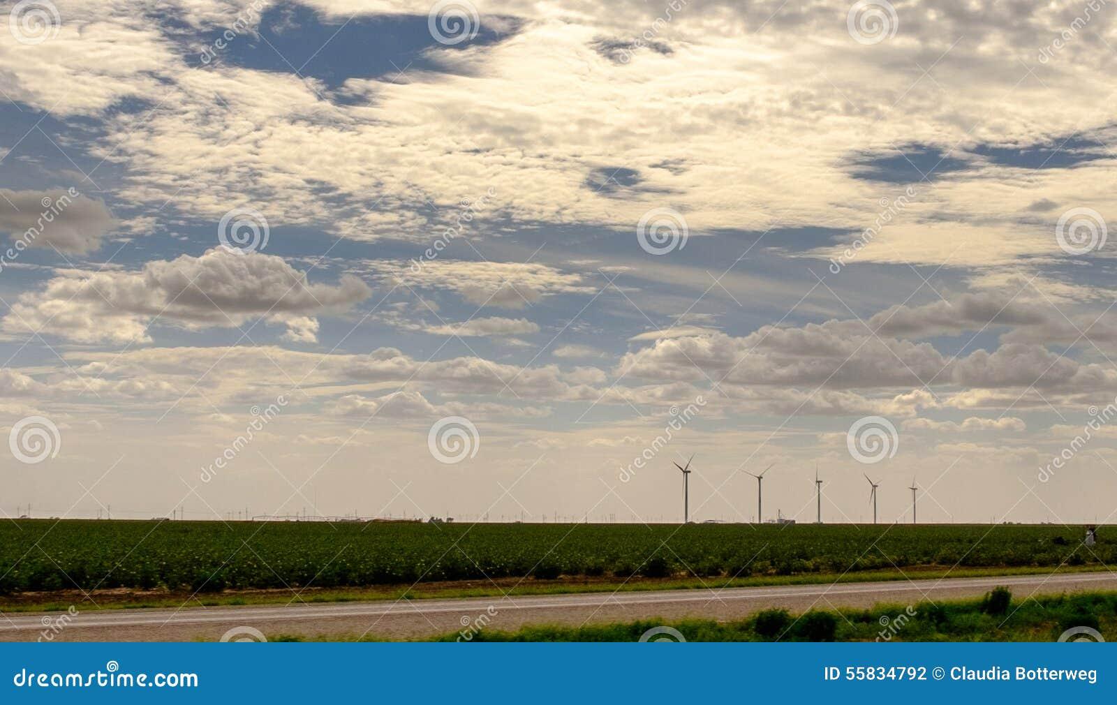 Turbinas de viento en las tierras de labrantío de Tejas