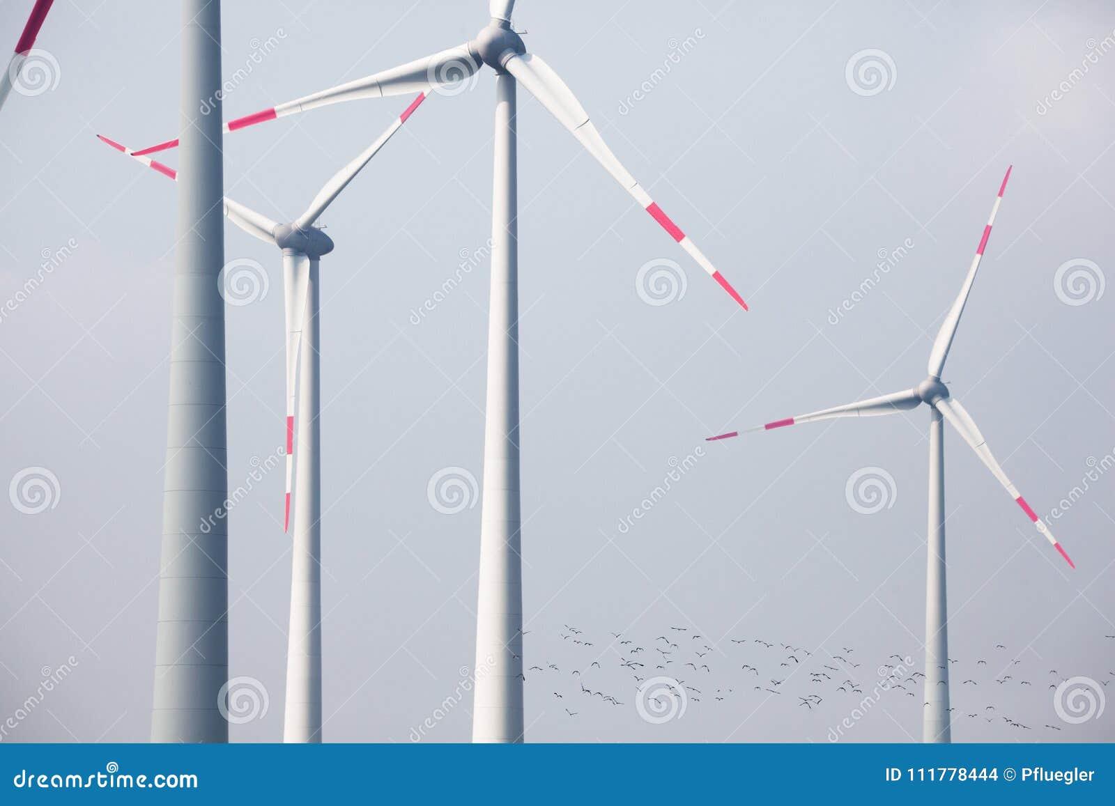 Turbinas eólicas grandes