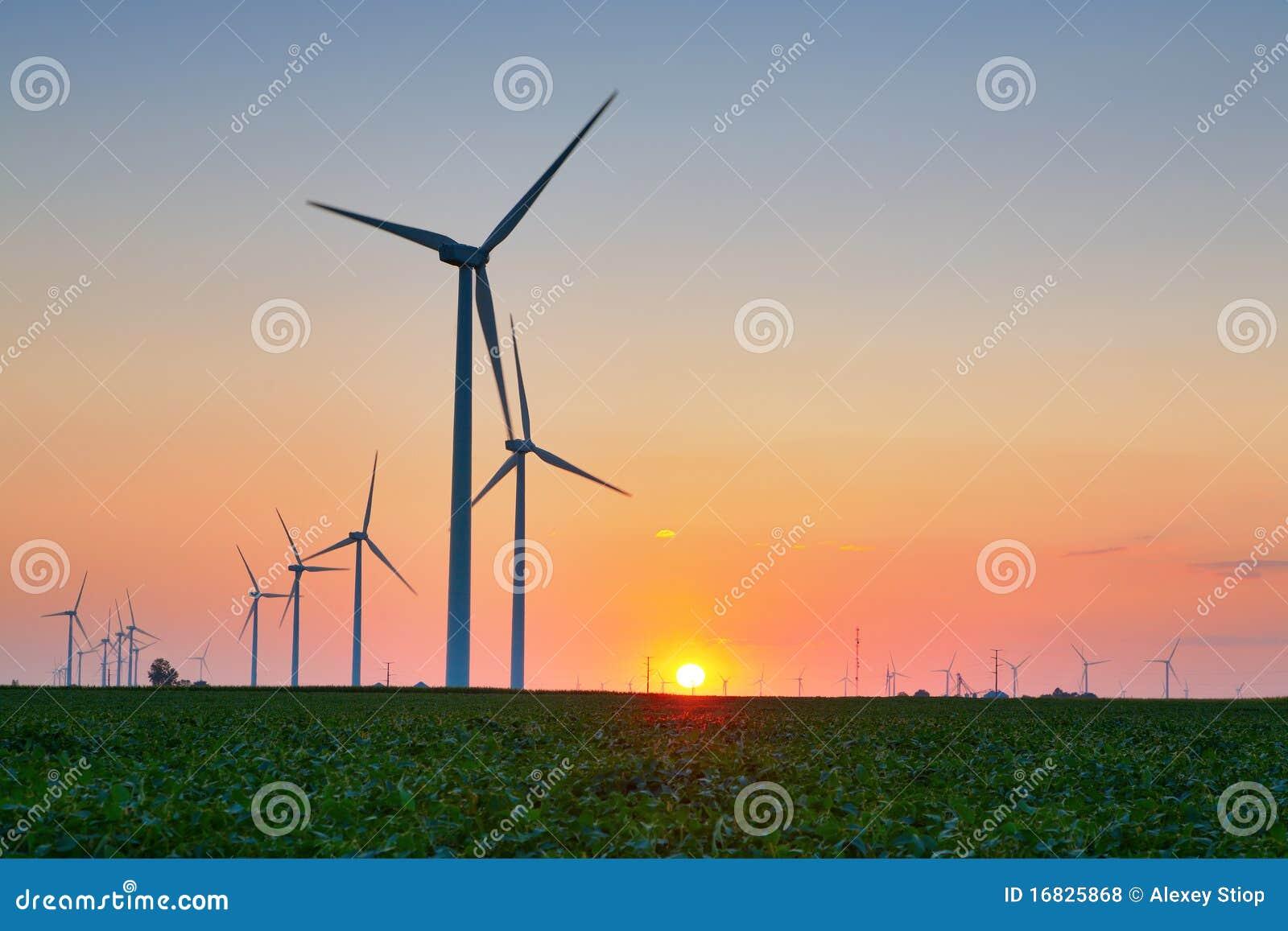 Turbine di vento