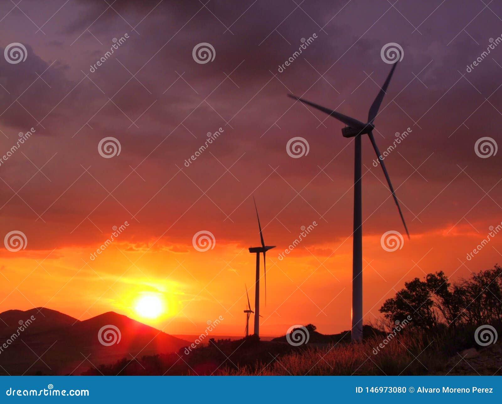 Turbines de vent avec le coucher du soleil