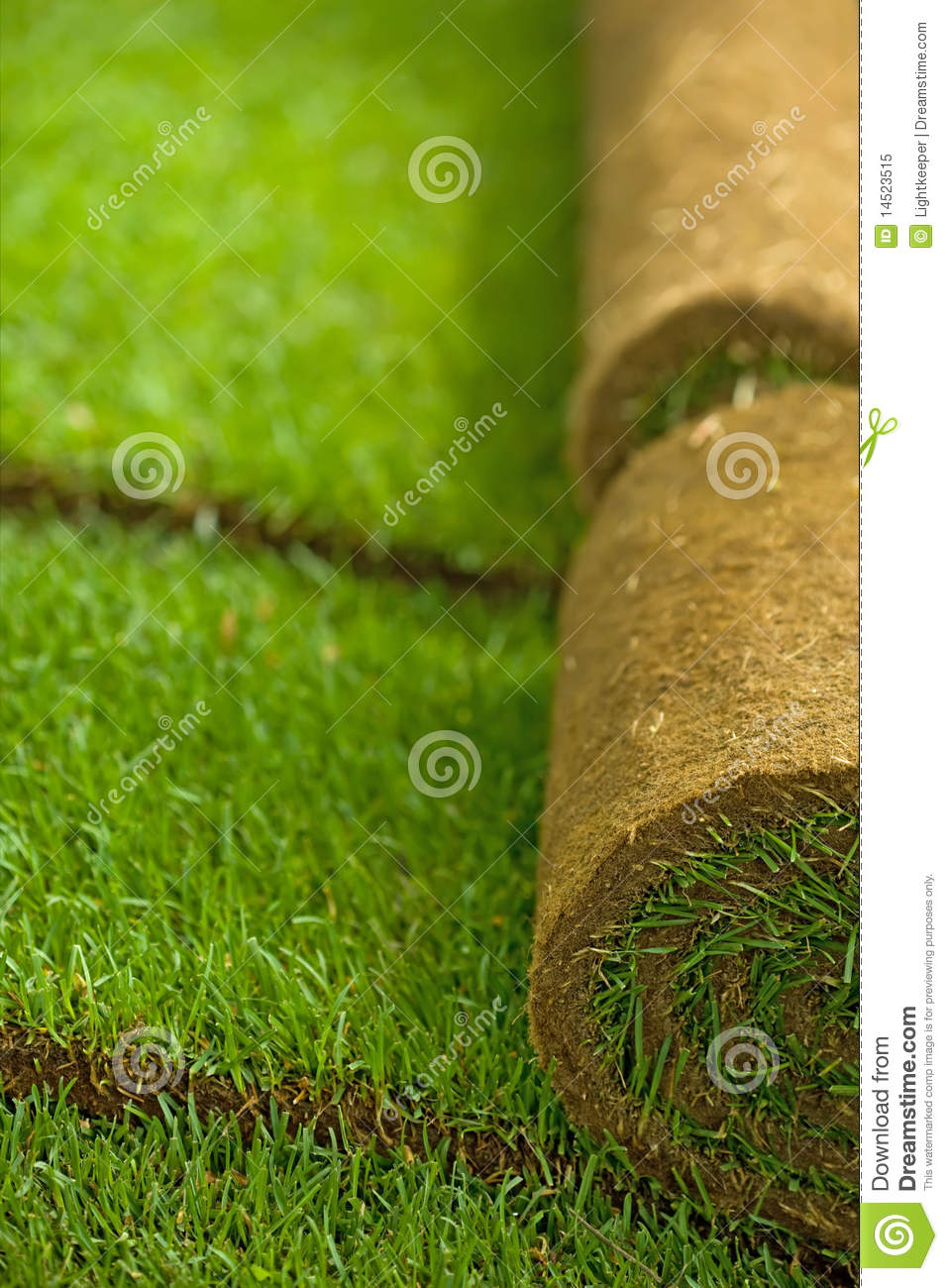 Turf Management types of majors