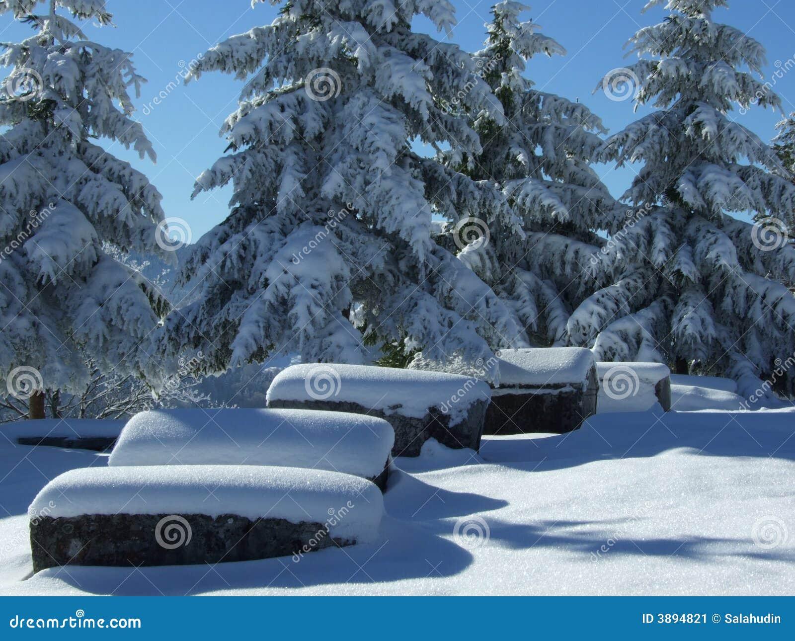 Turismo di inverno