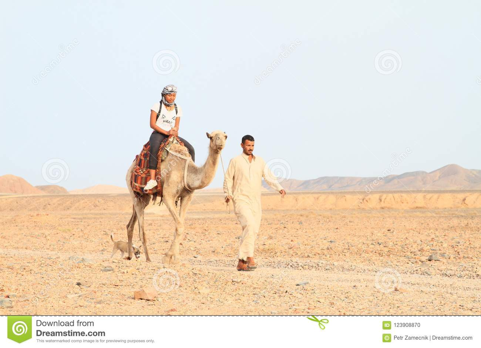 Turist- flicka som rider en kamel
