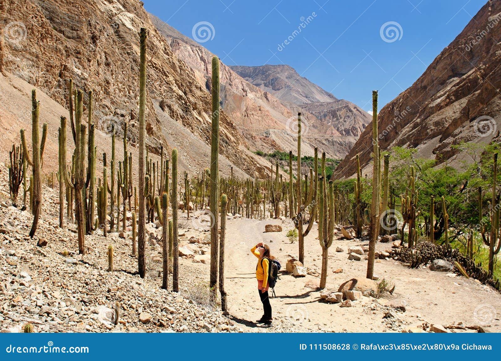 Turista em trekking no Peru