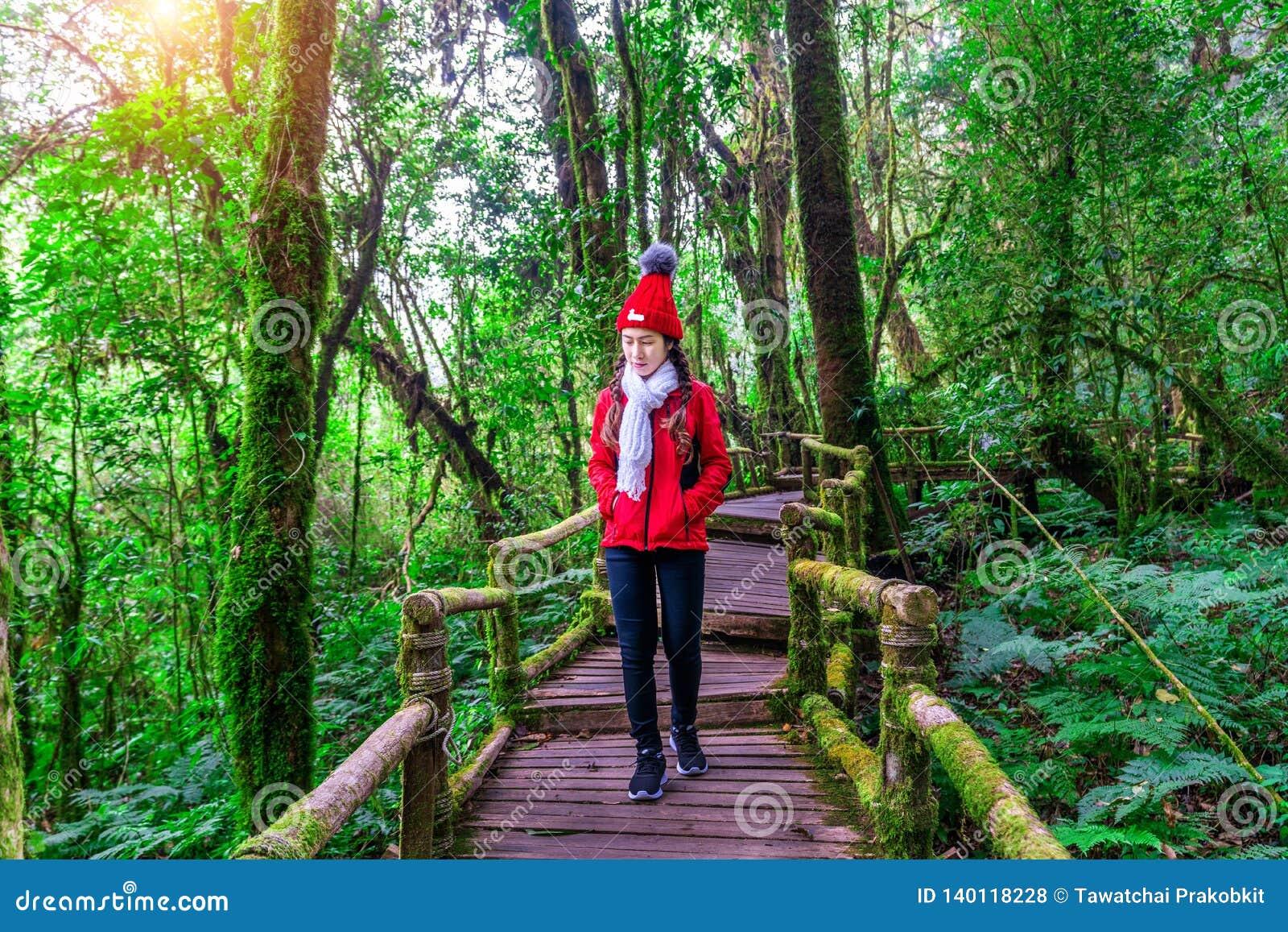 Turista que anda na fuga de natureza do ka do ANG no parque nacional de Doi Inthanon, Chiang Mai, Tailândia