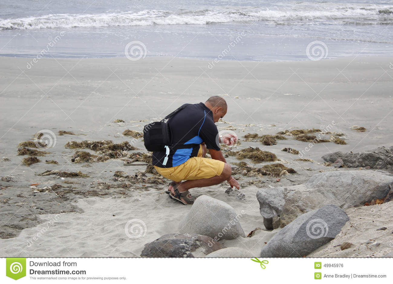Turista que beachcombing no crepúsculo