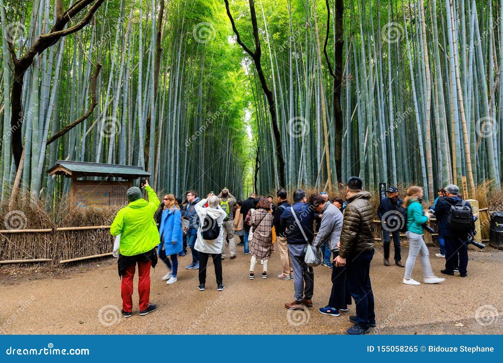 Turisti alla foresta di bambù di Arashiyama
