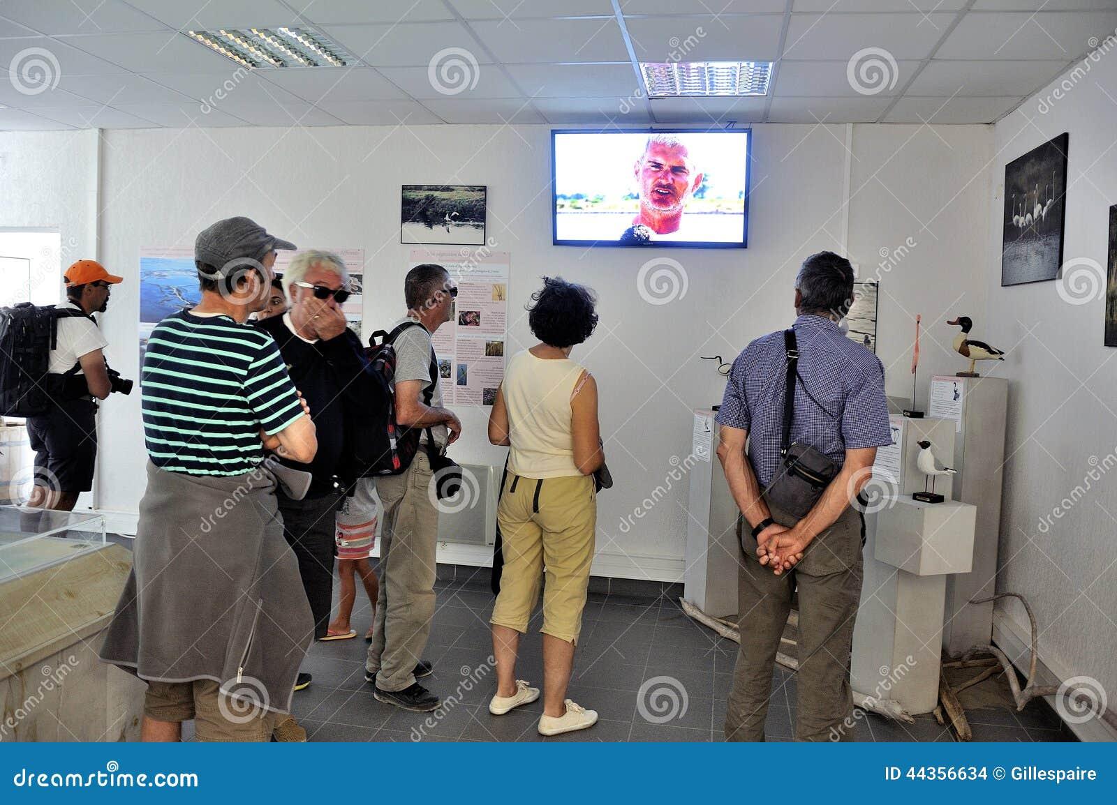 Turisti che guardano un video Aigues-Mortes salino