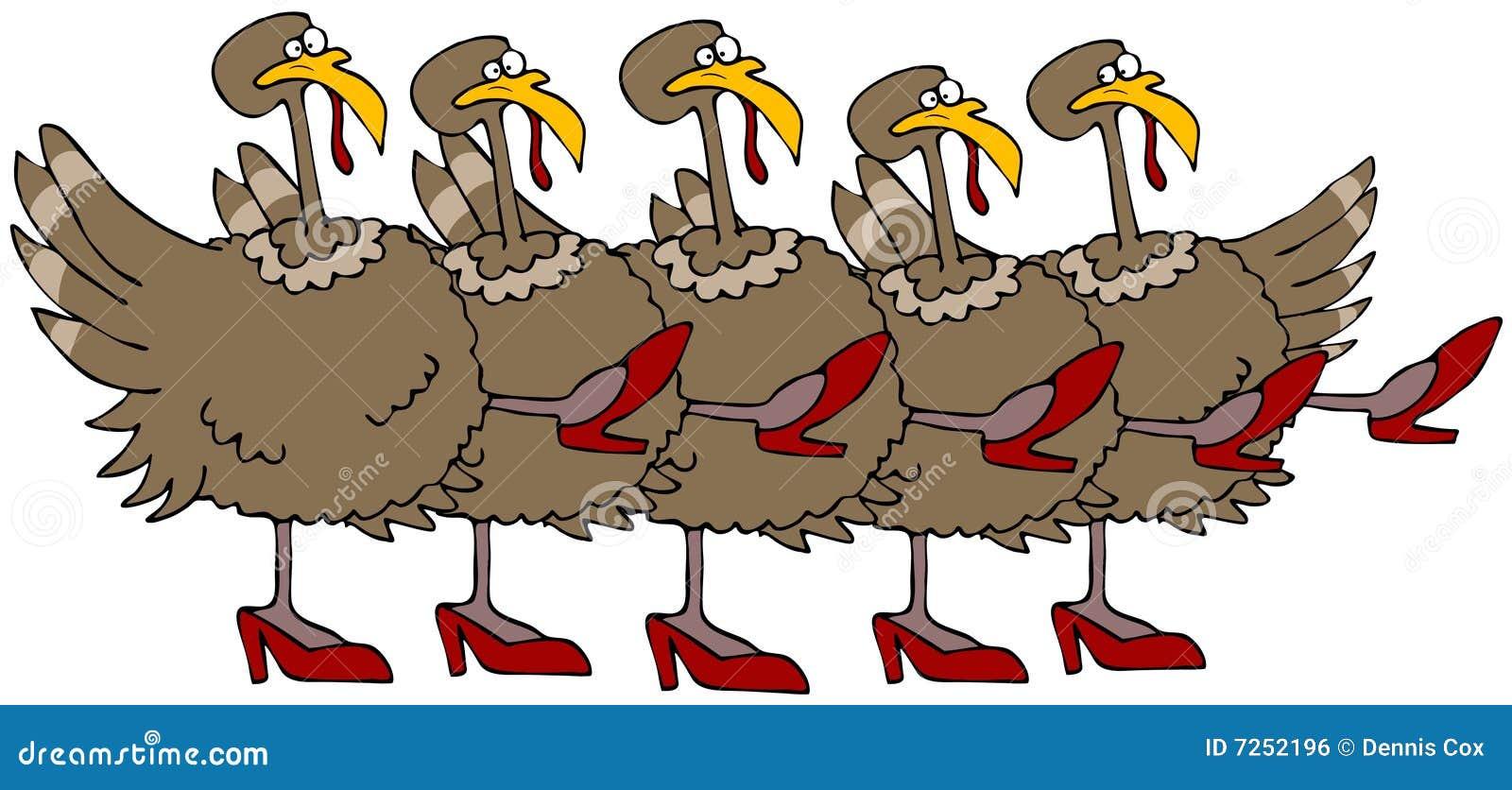turkey chorus line royalty free stock image image 7252196